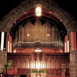 256_organ
