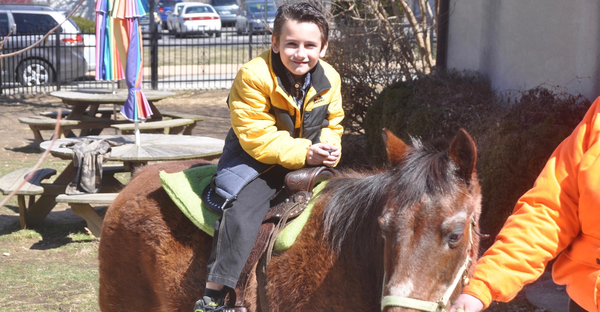 Boy on brown donkey