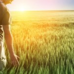 man-in-tall-grass_sm